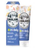 Зубная паста детская премиальная Фруктовый вкус KeraSys Smaland nordic mild 80г: фото